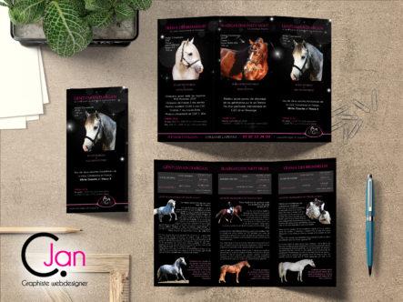 Dépliant 3 volets format DL fermé élevage d'argan Caroline Jan